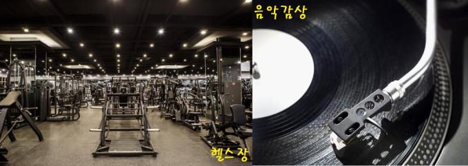 韓国で人気がある趣味