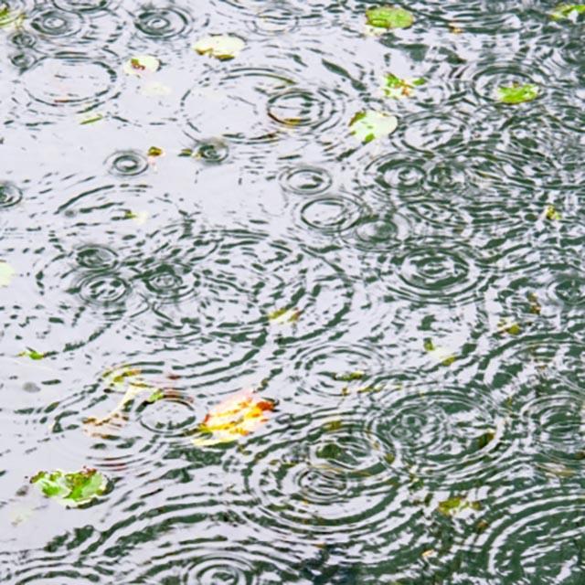 韓国の梅雨と雨に関するイロイロ