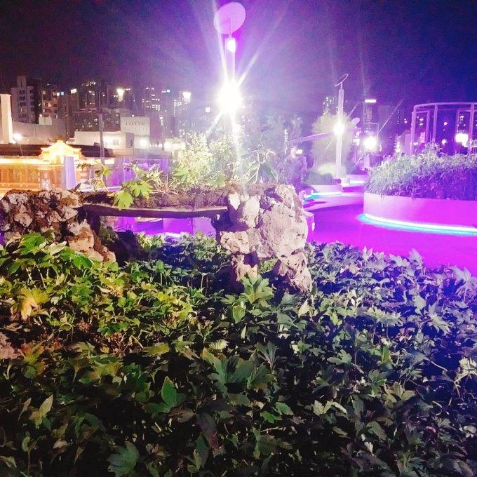 【ソウルの人気観光スポット】ソウルの街を空中散歩 서울로7017(ソウルロ7017)