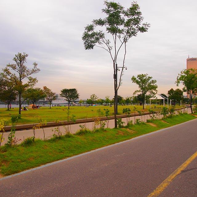【ソウルの人気観光スポット】自然を楽しもう 한강(漢江/ハンガン)